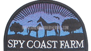 custom-patches-custom-and-embroidered-patches-545